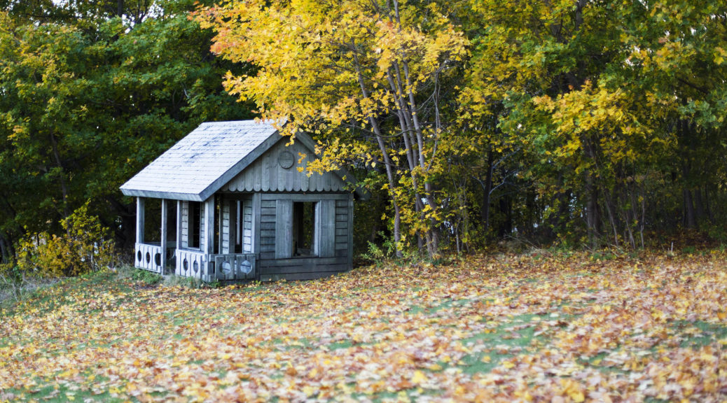 An old wooden cottage surrounded by autumn leaves